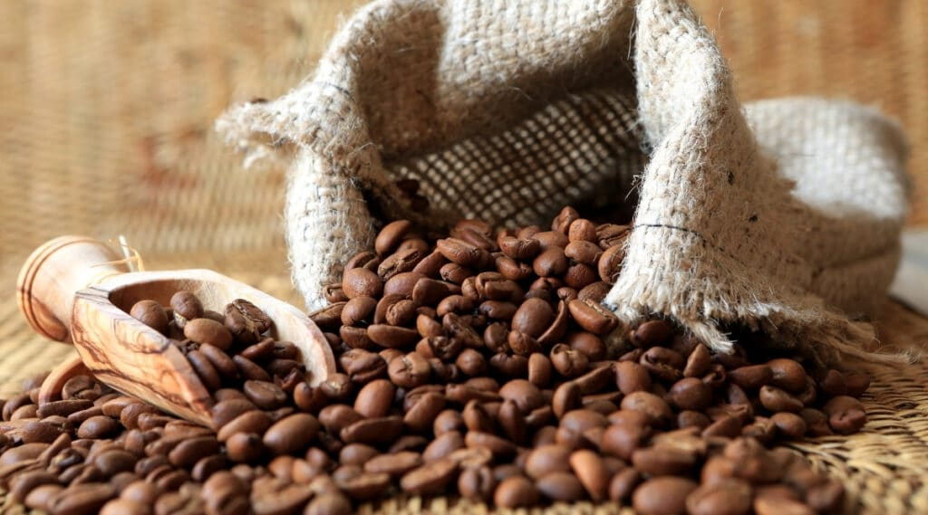 The Liberica coffee bean is an odd shaped bean with a unique flavor.