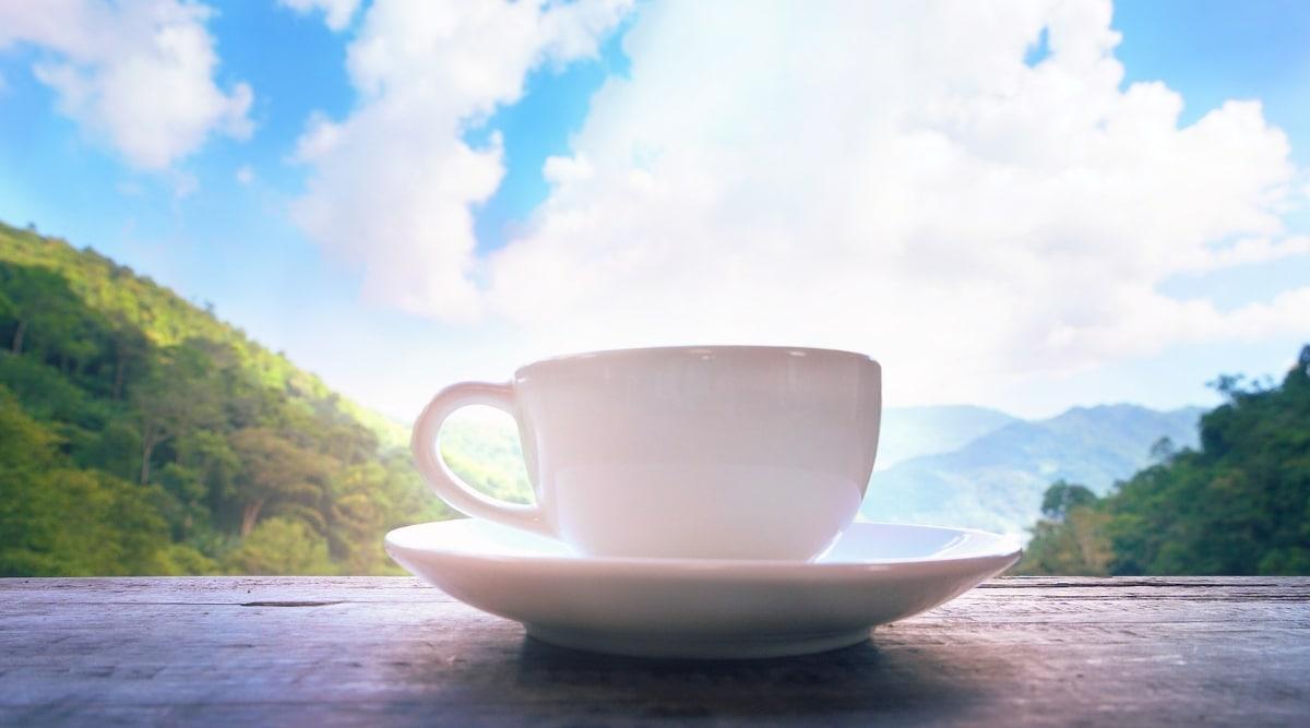 Blue Mountain Coffee.